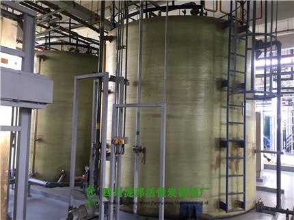 供货:Inter(成都)芯片制造中心-废水处理活性炭03